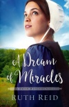 A Dream of Miracles, Amish Wonders Series