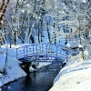 Christmas Cards - Winter Bridge - Pack of 10 - CMS