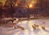 Christmas Cards - Sheep in Snowy Field - Pack of 10 - CMS - D2007