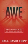 Awe - Why It Matters In All We Think, Say and Do