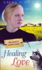 Healing Love, The Amish of Webster County Series